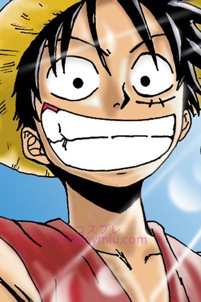 One Piece Monkey D. Luffy courte perruque de Cosplay